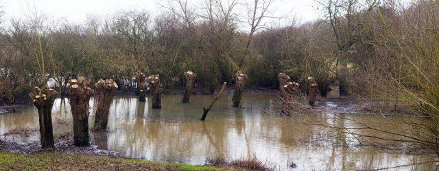 Floodplains 4 (panorama), Blue Bridge, Milton Keynes