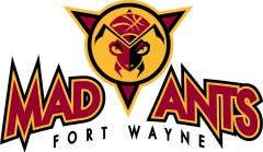 The Pacers have purchased the Fort Wayne Mad Ants.