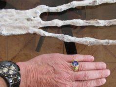 Comparação de uma mão humana com a suposta mão mumificada encontrada próxima de Cusco, no Peru