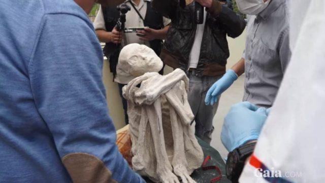 Múmia de Nazca, captura de tela de vídeo de Gaia.com