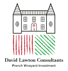 french vineyard investement