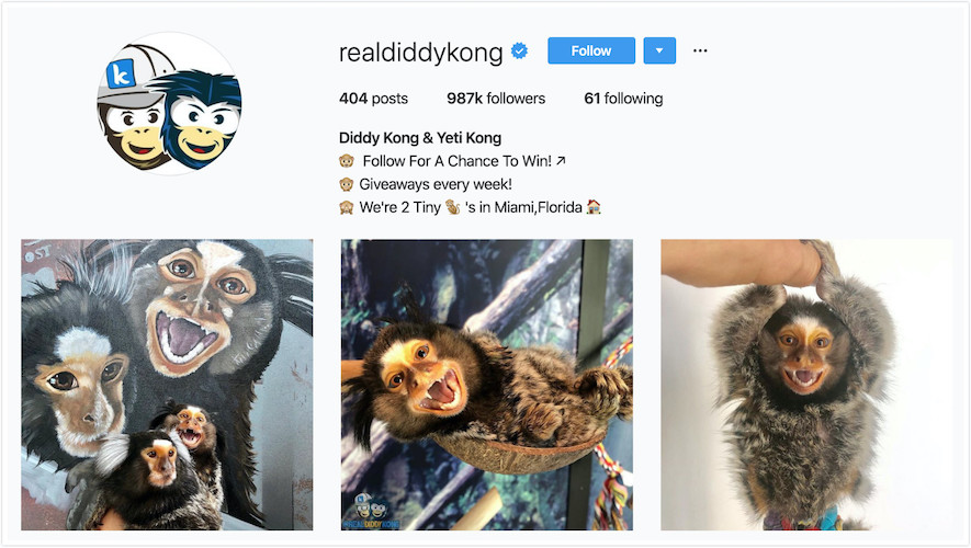 Instagram Profile of Diddy Kong and Yeti Kong