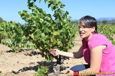 Espelt Viticultors