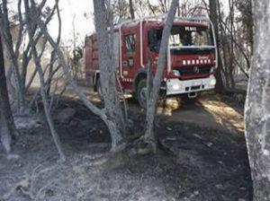 Incendi forestal Vilopriu controlat