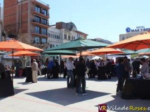 Vívid, el Festival del vi de l'Alt i el Baix Empordà