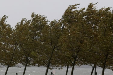 Finalitzat l'episodi de forts vents