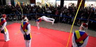 Festival Internacional del Circ Elefant d'Or de Girona