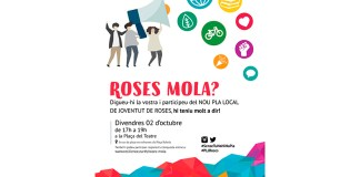 Pla Local de Joventut de Roses