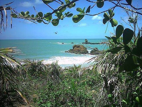 https://i1.wp.com/www.viladoartesao.com.br/blog/wp-content/uploads/2008/05/tambaba.jpg