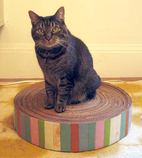 Base de papelão reciclado para seu gatinho afiar as unhas.