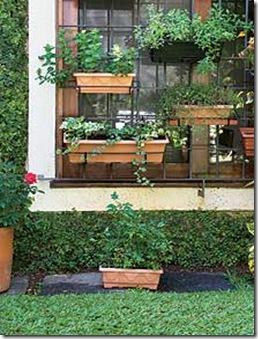Horta de temperos em floreiras na janela