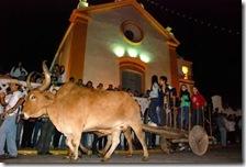 Desfile de carros-de-boi na frente da Igreja