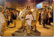 Desfile de carros-de-boi