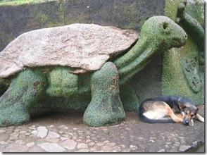 Um dos muitos bichos esculpidos no barranco por Nêgo