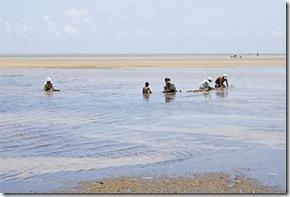 Familia de marisqueiras de terra na catação