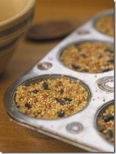 Receita de torta de sementes para pássaros