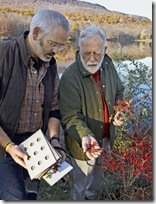 Richard e Ed escolhendo folhas para desidratar