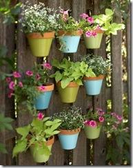 Vasos no muro com flores coloridas