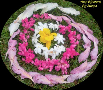 Mandala de flores coloridas, de Mirtes Pegorer