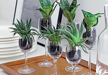 Taças de vinho num lindo conjunto de vasos