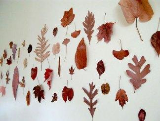 Folhas secas desidratadas formam um lindo painel decorativo