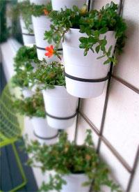 Os vasos são seguros por aros de metal