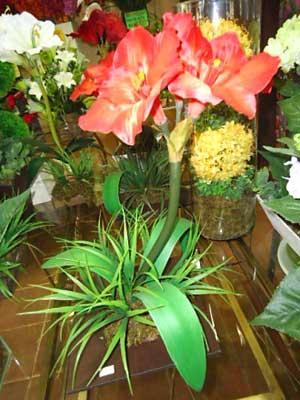 Vasos de madeira a venda no Classificados de artesanato da Vila