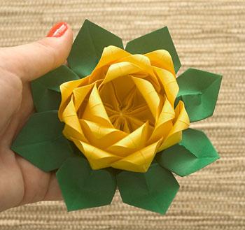 E eis que temos uma flor totalmente diferente