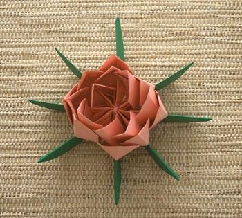 Flor com as pétalas levantadas