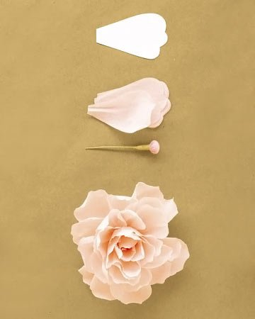 Peônia de papel de seda