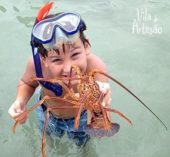 Garoto encontra uma lagosta