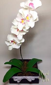Orquídeas feitas com biscuit
