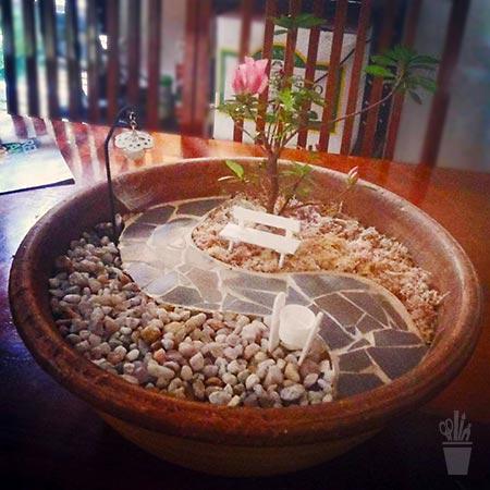 Solução de mini jardim