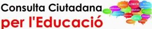 consulta ciutadana 2013