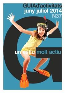 GUIA n37