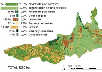 Imatge de CREAF mapa afectacio vegetacio incendi Odena juliol 2015 V02