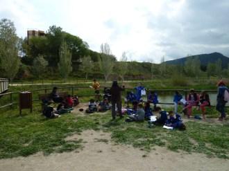 Escola Pompeu Fabra coneix el riu abr16 (1)