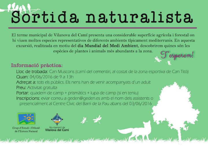 6. Sortida naturalista web