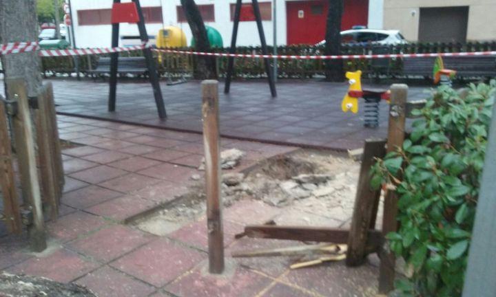 arbre-carrer-les-quadres-1