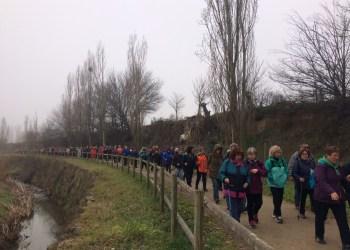 Passejades Vilanova del Cami feb17 (26)
