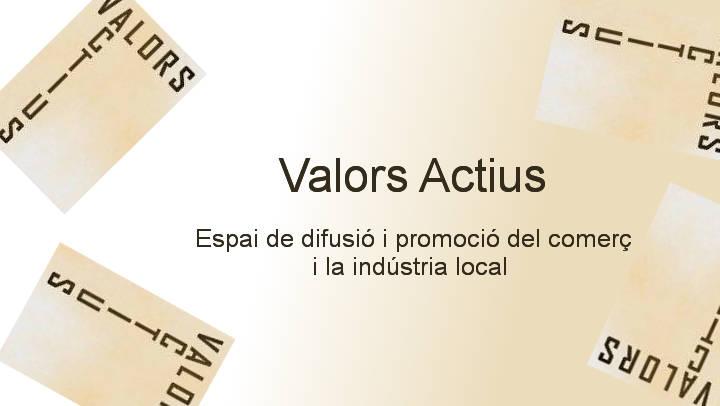 Valors actius logo baner VI