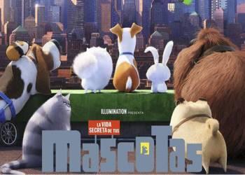 +QCine Mascotas cartel nov17-v2