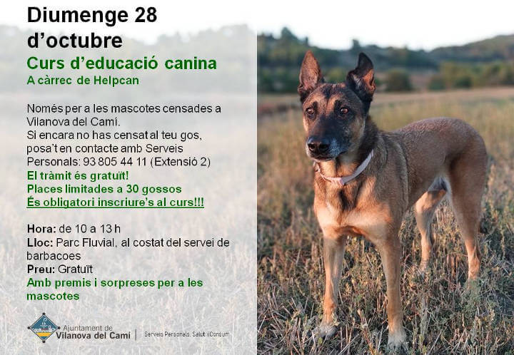 Educacio canina 2