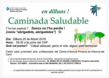 CAMINADA febrer 2019-cartell-fons