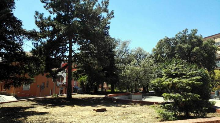 tala arbres placa Vilarrubias 2 agost 19