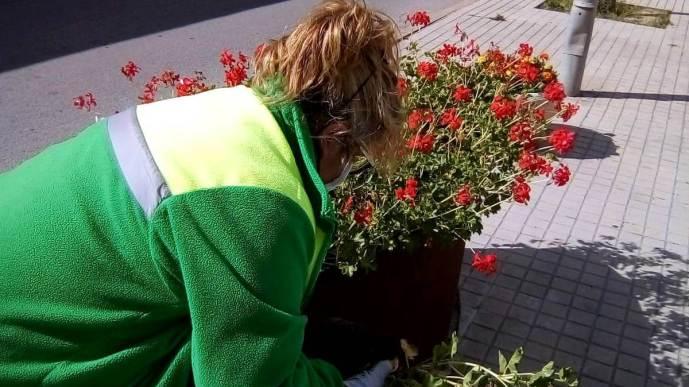 Treballs jardineria 2
