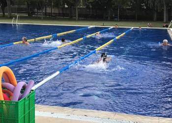 Activitats piscina juliol 2020 2