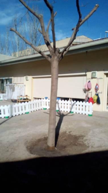 replantacio arbre al Molinet (1)