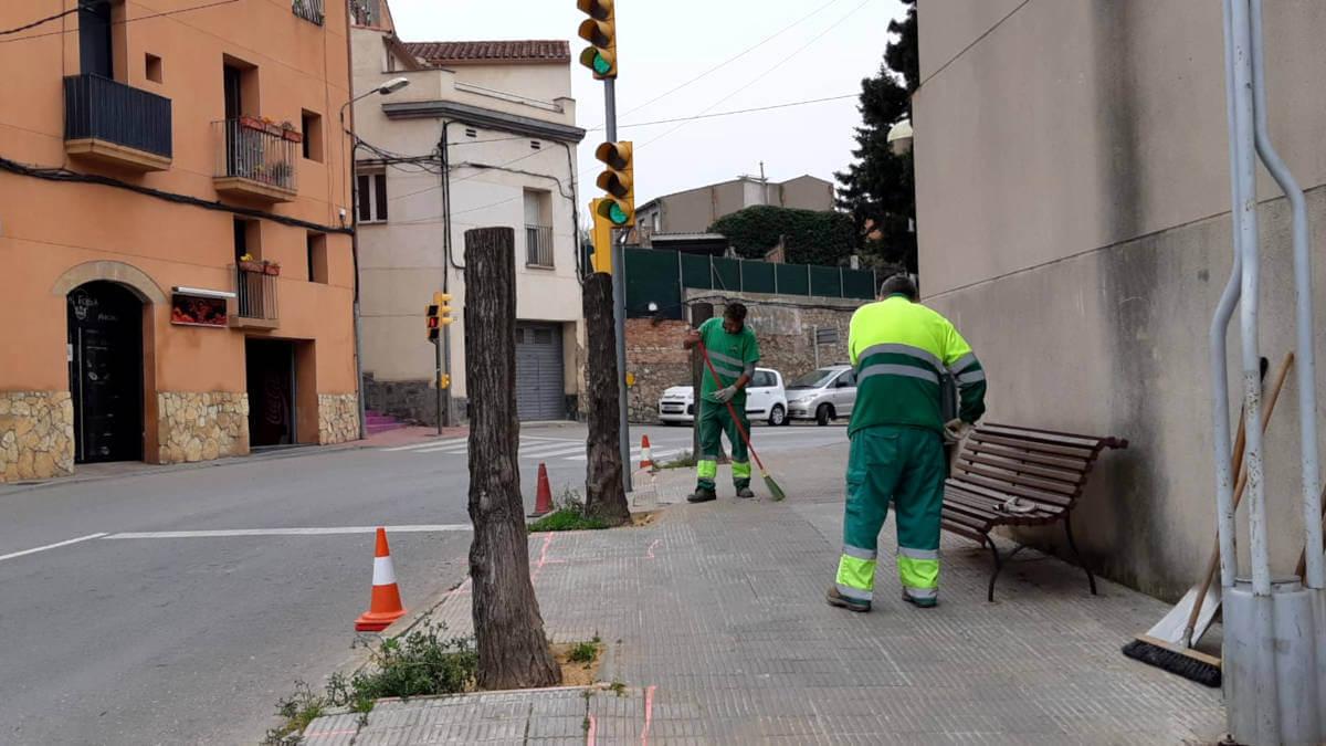 Jardineria tala arbres carrer Igualada 11
