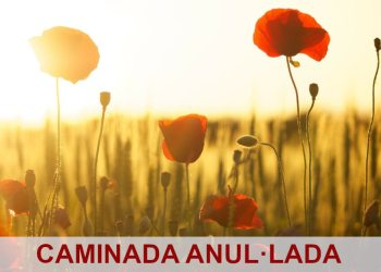 imatge de llibreria_caminada solidaria-anullacio-1